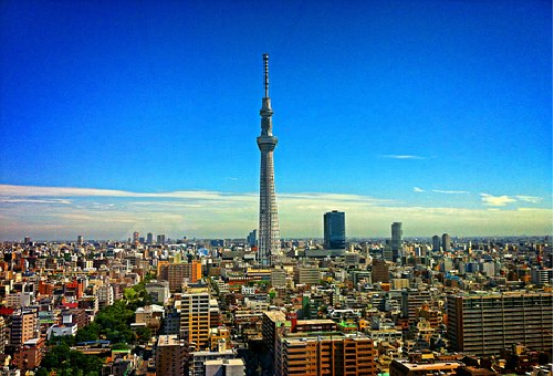 メジロ 東京 野鳥