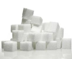 メジロ 砂糖水 濃度