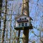 メジロの巣箱や餌台!作り方とは?